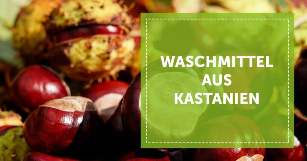 Autarkie_Waschmittel_aus_Kastanien