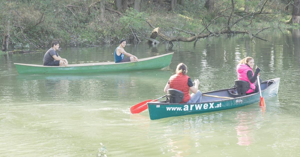 NEVEREST Seminar: Wasser - Wald - Wiese