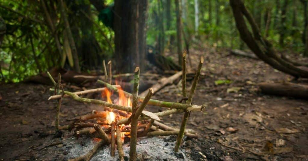 nahrung_feuerstelle_kochen_essen_survival