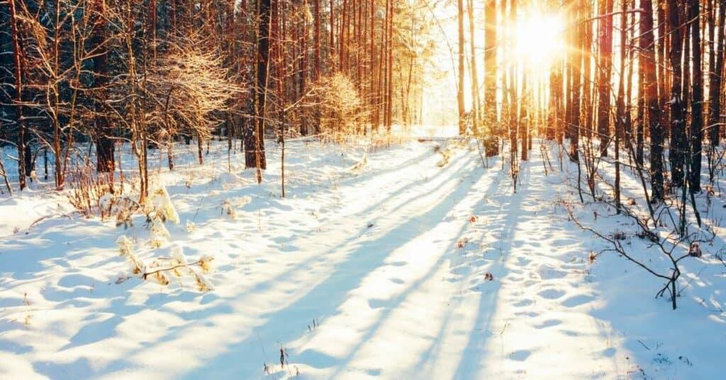 erlebnispädagogik_im_winter_tolle_spiele_und_übungen_für_groß_und_klein