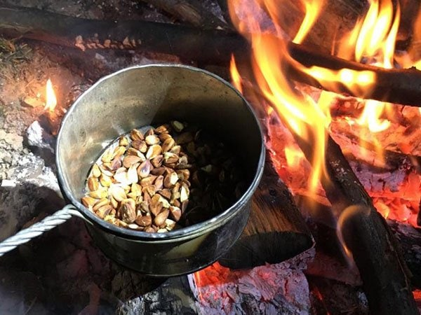 Wildkräuter Outdoorküche | Bucheckern Kaffee