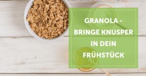 granola_selber-machen_neverst_blog_header