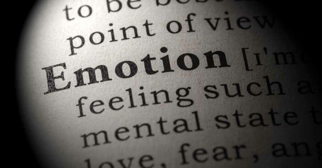 Emotion_Grundemotionen_Paul_Ekman_Mikroexpressionen_Gesichtsausdrücke
