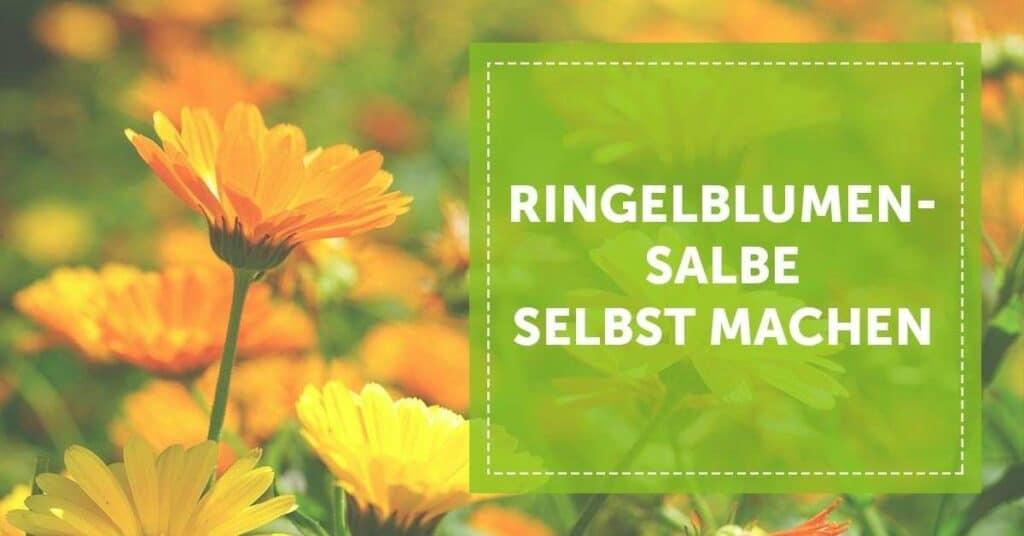 blogartikel_ringelblumensalbe_selber_machen_anleitung